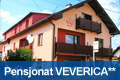 privat_veverica
